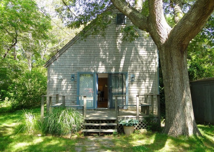 Wooded Haven, Martha's Vineyard Oasis #1
